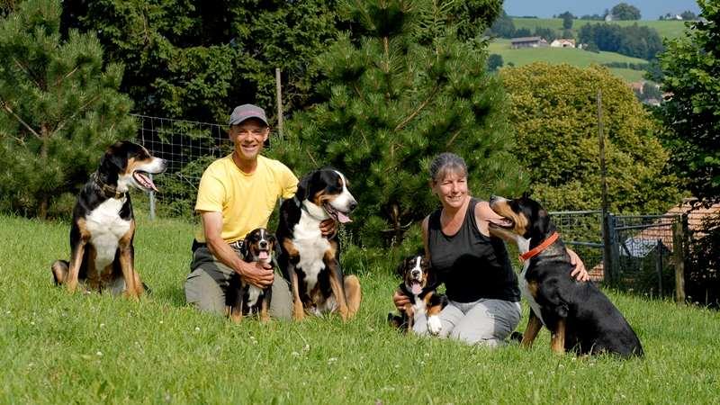 Das Team der Hundepension nähe St. Gallen: Manuela Antosiewicz und der Tierpfleger Bruno Horn